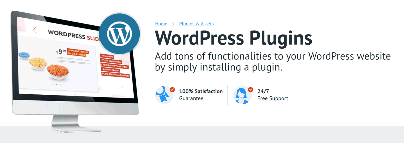 Word Press Plugins